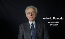 antonio-damasio